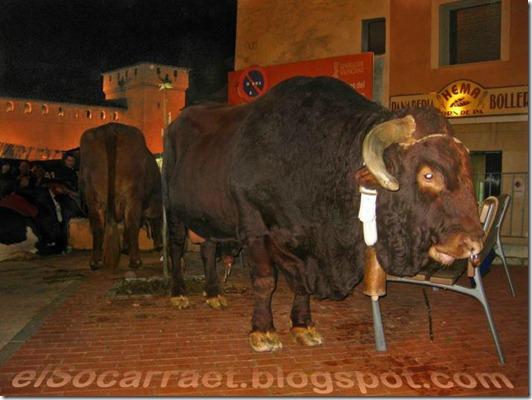 Fira2011 elSocarraet   © rfaPV (24)