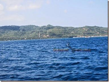 Indahnya laut karimunjawa
