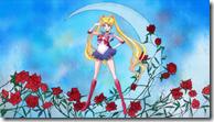 [Aenianos]_Bishoujo_Senshi_Sailor_Moon_Crystal_01_[1280x720][hi10p][B51DA29A].mkv_snapshot_17.20_[2014.07.08_08.52.43]