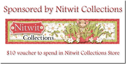 Nitwit-prize