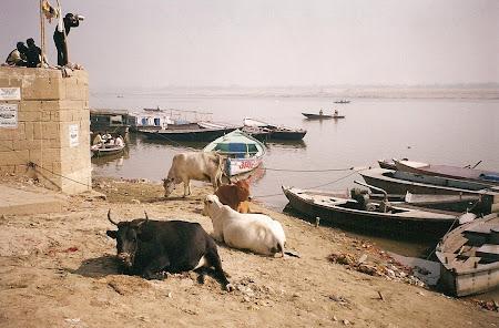 Varanasi: Ganges