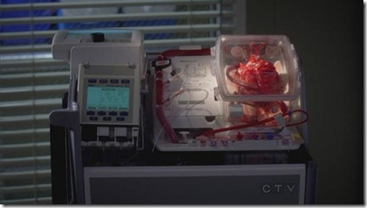heart-shaped-greys-anatomy