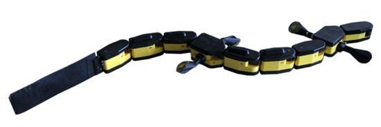 Salamandra Robótica 04