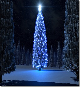 natale albero 2