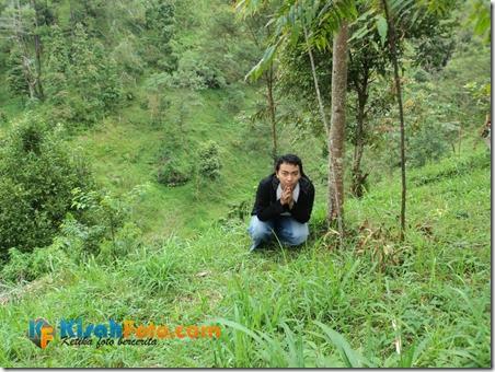 Makan di Hutan_05