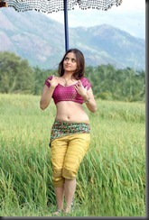 Bollywood-actress-sheena-hottest still