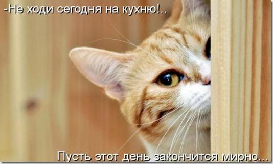 5d9b503656d368eac8dbba1c28d_prev