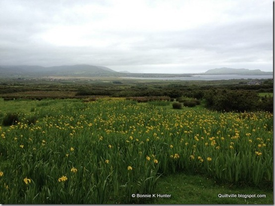 Ireland2013 746