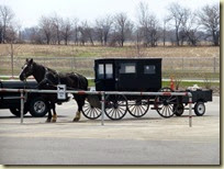 Amish Buggy (1)
