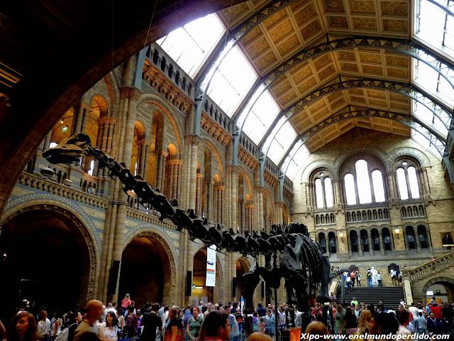 dinosaurio-museo-historia-natural-londres.JPG