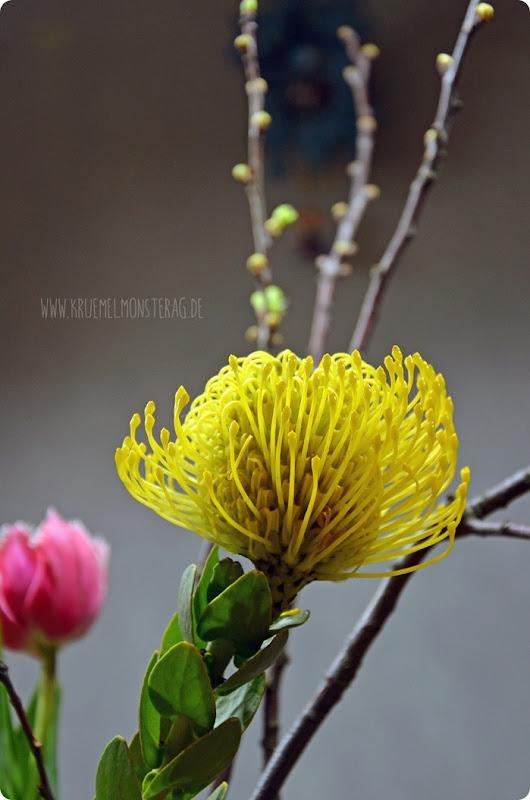 FF (09) gelbe Protea, gefüllte Tulpen, Kirschzweige und rosa Gänseblümchen