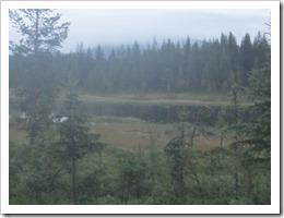 Lapland Ultra 2011 029