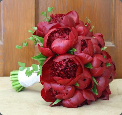burgundy peony splendid stems karen splendido IMG_8669