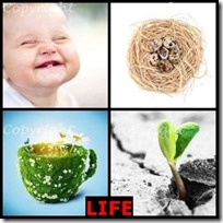 LIFE- 4 Pics 1 Word Answers 3 Letters