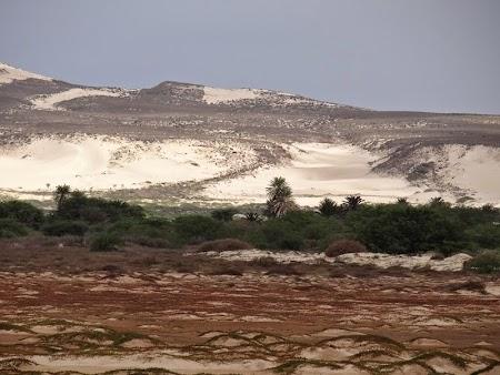 22. Nisip adus din Sahara.JPG