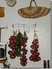 onion storage