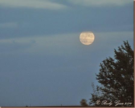 10-07-14 moon 13