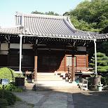cute japanese house in Tokyo, Tokyo, Japan