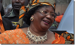 Joyce Banda LGBT rights