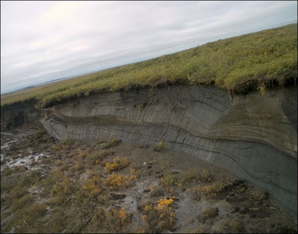 A thaw slump in the Mackenzie Delta. Photo: Steve Kokelj / Government of the Northwest Territories