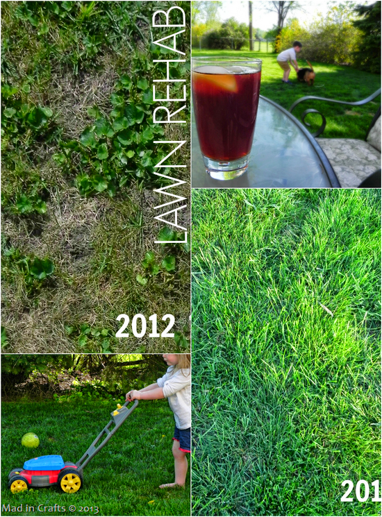 Rehabbing the Lawn - Mad in Crafts
