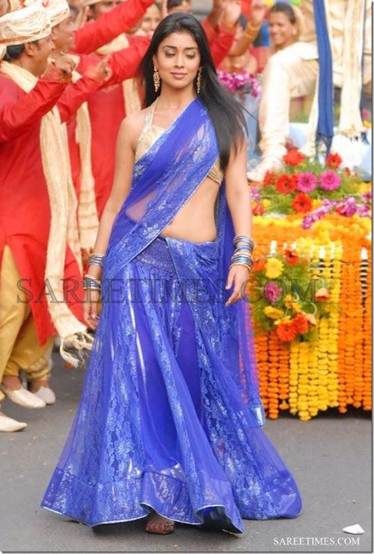 Shriya (120)1332234883