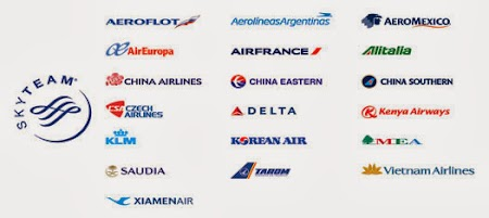 Companii aeriene Sky Team