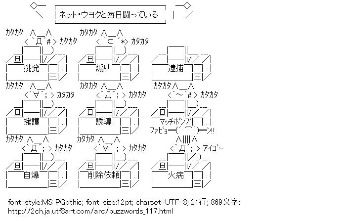 流行語,2012年版,ネトウヨ