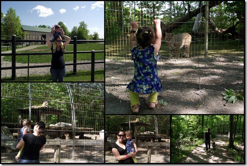 Zoo Pics for Blog3