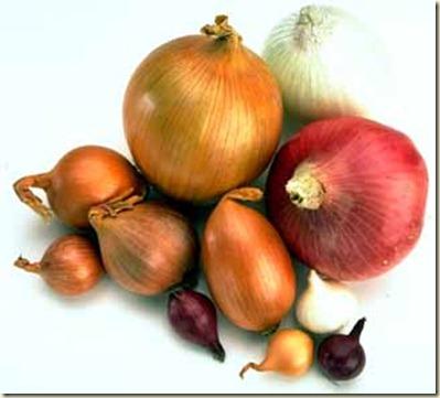 Como Hacer Crecer el Pelo con Cebolla