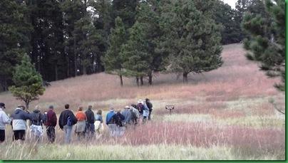 Bear Lodge - Sundance WY 070
