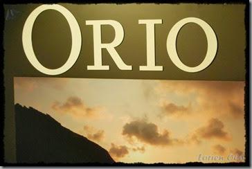 Orio (15)