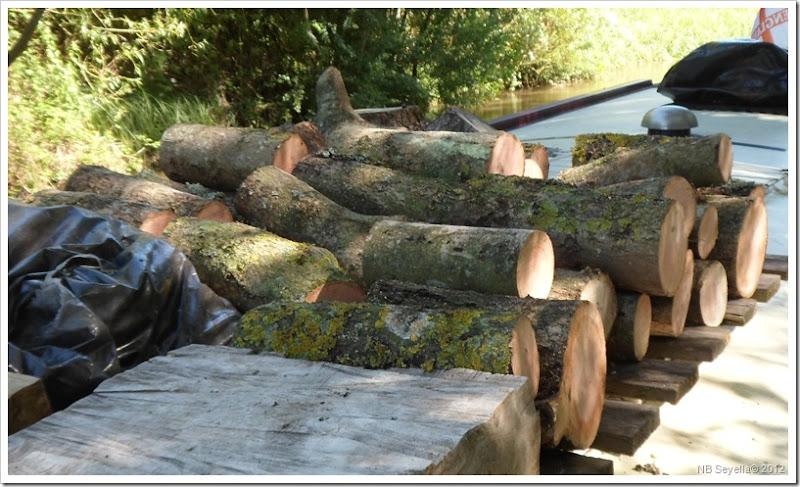 SAM_1097 Bit of wood