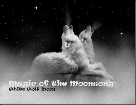 Magic of the Moonsong