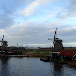 the zaanse schans in zaandam in Zaandam, Noord Holland, Netherlands