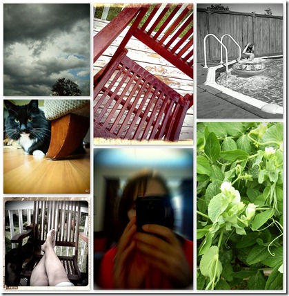 Photo A Day July Collage (Week 1)