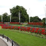 flower garden in London, London City of, United Kingdom