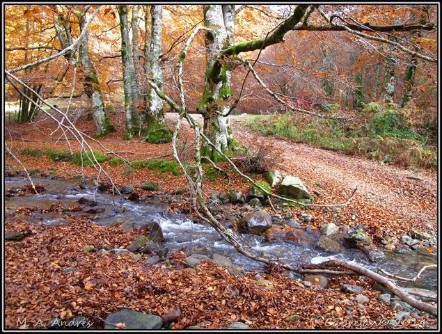 Lantz otoño 089