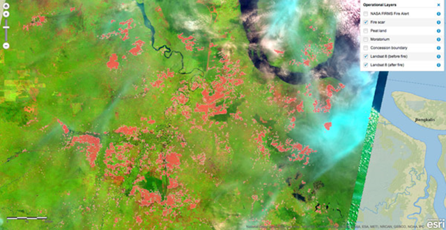 Satellite view of burn scars after the June 2013 fires in Riau, Sumatra. Roughly half of hotspots recorded during the peak of the haze crisis were located in concessions belonging to palm oil and pulp and paper companies. Photo: CIFOR interactive fire risk tool