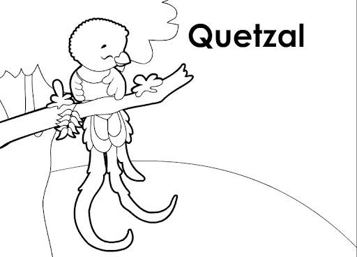 Dibujos de el quetzal para colorear - Imagui