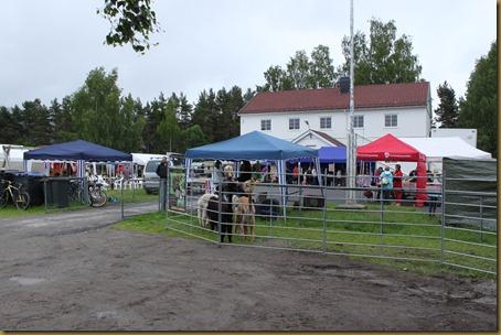 Knapperdagen 2011 002