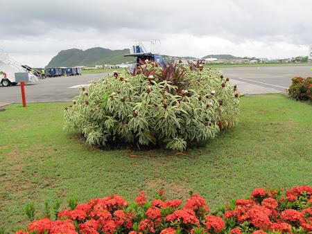 Aeroport St. Lucia Caraibe