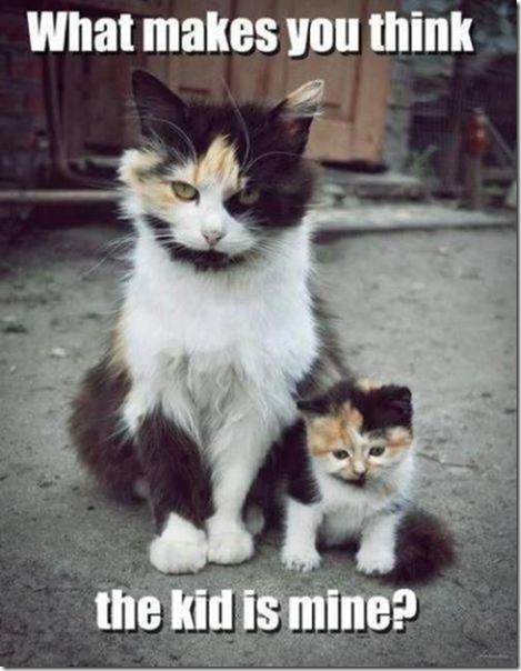 parents-kids-same-7
