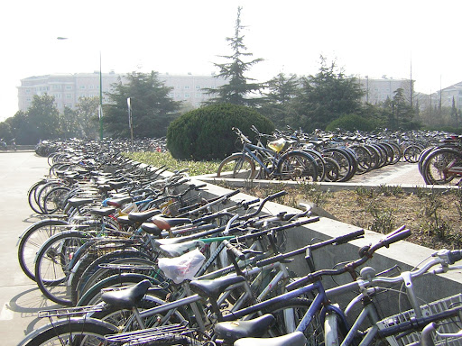 Parking à vélos à l'université
