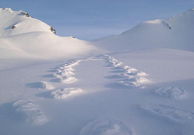 raised-footprints-snow-5