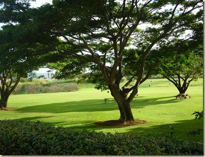 Hawaii Dec 2012 Jan 2013 Day 3 043