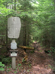 boy_scout_camping_troop_24_june_2008_017_20090329_1287392383.jpg