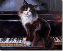 gato pianista blogdeimagenes (8)