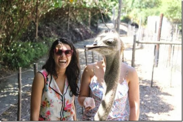 photobombs-funny-face-3