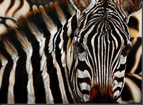 Danielle Beck. Zèbre du Serengeti. Huile